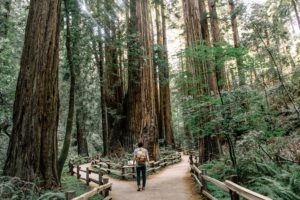 Visiting less -frequented areas is a great way to travel sustainably on a budget