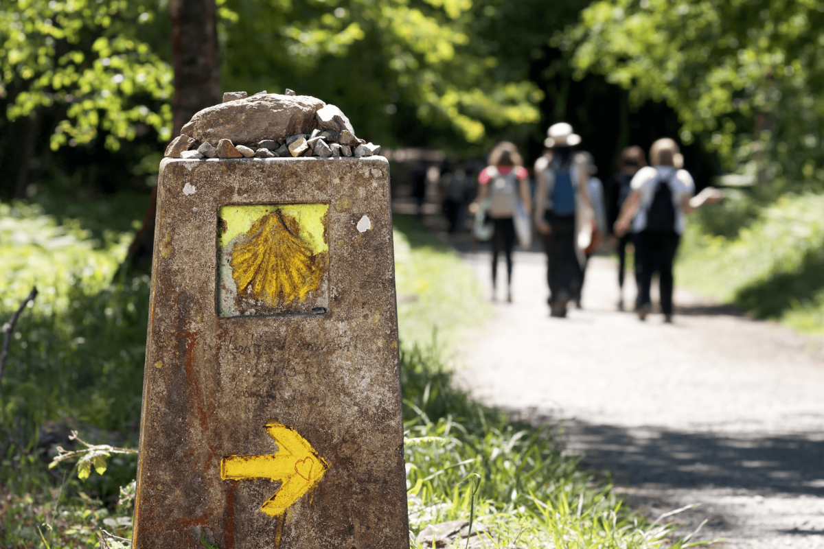 covid-friendly walking and cycling tours