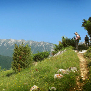Romania self guided walk in the Carpathian mountains - Sustainable Tours in Europe